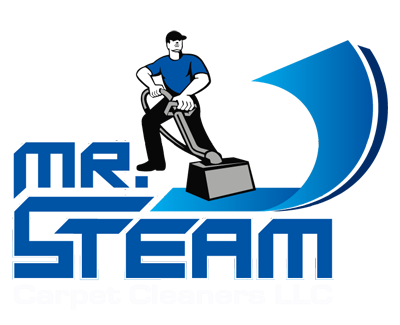 Mr. Steam Carpet Cleaners