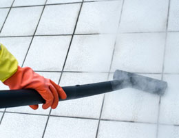 Mr. Steam Cleaning Tile and Grout