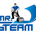 Mr Steam Logo
