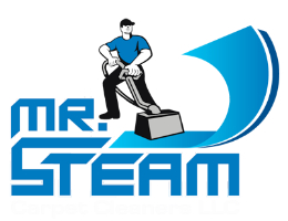 Mr. Steam Cleaning Logo